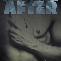 His Ever After Available at All Retailers!